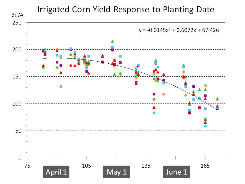 Irrigated Corn Yield Response to Planting Date